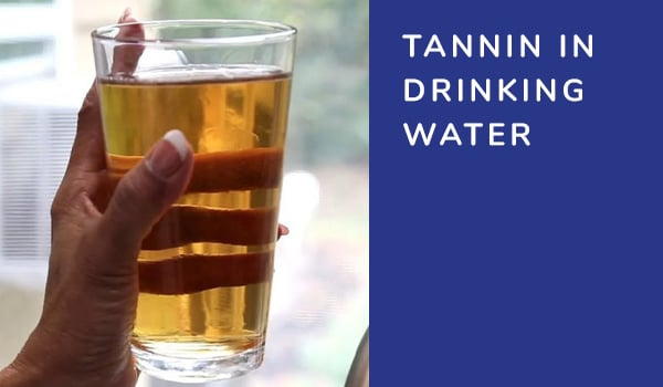 Tannin in Drinking Water